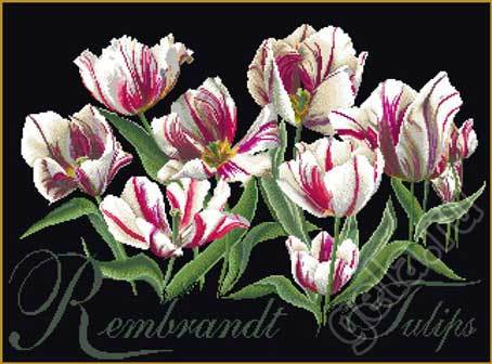 """Набор для вышивания крестом Thea Gouverneur """"Рембрандт, Тюльпаны"""" (фото, вид 1)"""