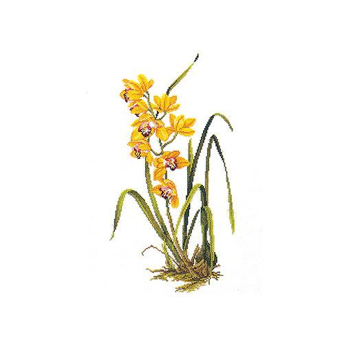 """Набор для вышивания крестом Eva Rosenstand """"Желтая орхидея"""""""