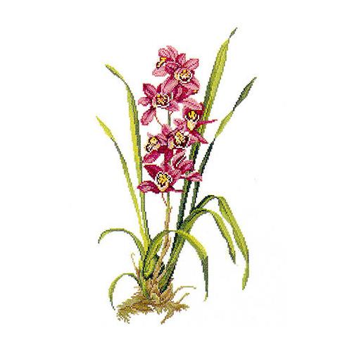 """Набор для вышивания крестом Eva Rosenstand """"Красная орхидея"""""""