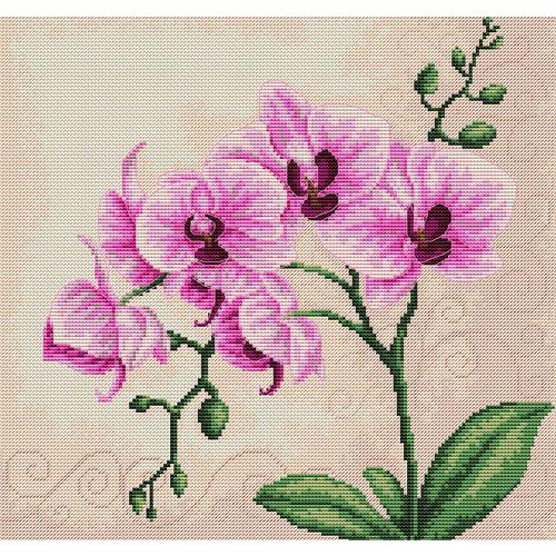 """Набор для вышивания крестом Luca-S """"Орхидеи"""" (фото)"""