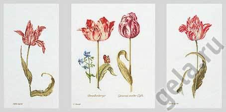"""Набор для вышивания крестом Thea Gouverneur """"Тюльпаны"""""""