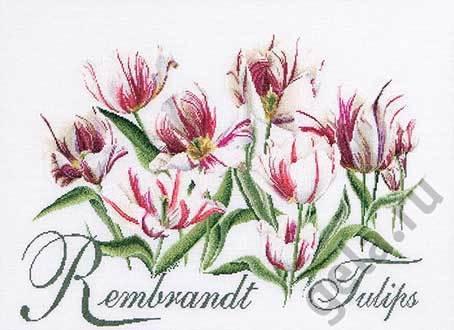 """Набор для вышивания крестом Thea Gouverneur """"Рембрандт, Тюльпаны"""" (фото)"""