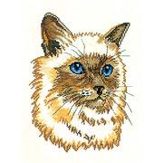 """Набор для вышивания крестом Eva Rosenstand """"Персидский кот"""""""