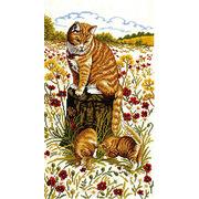 """Набор для вышивания крестом Eva Rosenstand """"Кошки"""""""