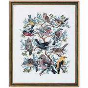 """Набор для вышивания крестом Eva Rosenstand """"Птичий парад"""""""