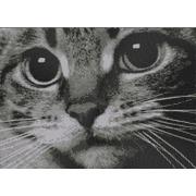 """Ткань с рисунком для вышивки бисером Конёк """"Котёнок"""""""