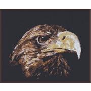 """Набор для вышивания крестом Палитра """"Взгляд орла"""""""