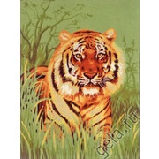 "Канва/ткань с нанесенным рисунком Diamant ""Тигр в траве"""