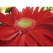 """Ткань с рисунком для вышивки бисером Глурия (Астрея) """"Красный цветок"""""""