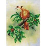 """Набор для вышивания крестом М.П. Студия """"Птичка с ягодами"""""""