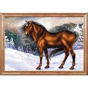 """Ткань с рисунком для вышивки бисером Магия канвы """"Конь на снегу"""""""