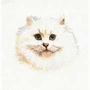 """Набор для вышивания крестом Thea Gouverneur """"Белый персидский кот"""""""