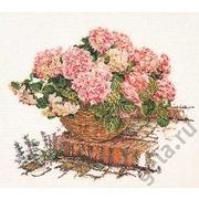 """Набор для вышивания крестом Thea Gouverneur """"Розовые гортензии"""""""