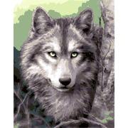 """Канва с нанесенным рисунком Grafitec """"Серый волк"""""""