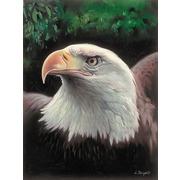 """Канва с нанесенным рисунком Grafitec """"Величественный орел"""""""