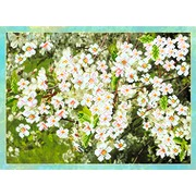 "Ткань с рисунком для вышивки бисером Матрёнин посад ""Цветущая вишня"""
