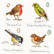 """Набор для вышивания крестом Bothy Threads """"Garden Birds 1"""" (Птицы 1)"""