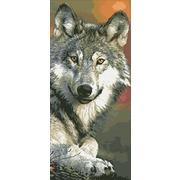 """Набор для выкладывания мозаики Паутинка """"Волк"""""""