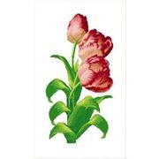 """Набор для вышивания крестом Каролинка """"Тюльпаны"""""""