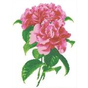 """Канва/ткань с нанесенным рисунком Каролинка """"Камелия"""""""