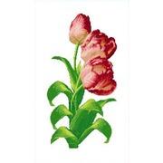 """Канва с нанесенным рисунком Каролинка """"Тюльпаны"""""""