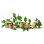 """Канва/ткань с нанесенным рисунком Каролинка """"Натюрморт с яблоками"""""""