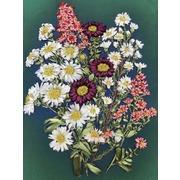"""Набор для вышивания лентами Каролинка """"Полевые цветы"""""""