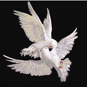 """Канва/ткань с нанесенным рисунком Конёк """"Пара голубей"""""""