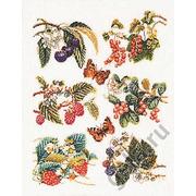 """Набор для вышивания крестом Thea Gouverneur """"Группа фруктов"""""""