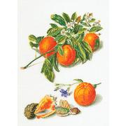 """Набор для вышивания крестом Thea Gouverneur """"Апельсины и мандарины"""""""