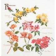 """Набор для вышивания крестом Thea Gouverneur """"Группа цветов розы"""""""
