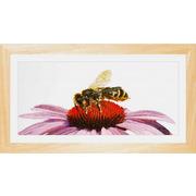 """Набор для вышивания крестом Thea Gouverneur """"Пчела на эхинацее"""""""