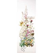 """Набор для вышивания крестом Thea Gouverneur """"Полевые цветы"""""""