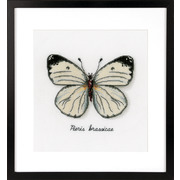"""Набор для вышивания крестом Vervaco """"Белая бабочка"""""""