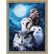 """Набор для выкладывания мозаики Алмазная живопись """"Ночные совы"""""""
