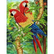 """Ткань с рисунком для вышивки бисером Каролинка """"Попугаи"""""""