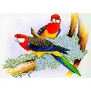 """Канва/ткань с нанесенным рисунком Каролинка """"Попугаи"""""""