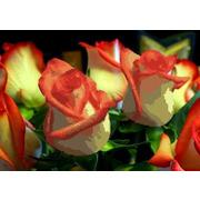 """Канва/ткань с нанесенным рисунком Каролинка """"Розы"""""""