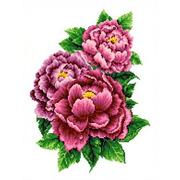 """Ткань с рисунком для вышивки бисером Каролинка """"Розовые пионы"""""""