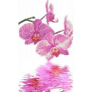 """Ткань с рисунком для вышивки бисером Каролинка """"Орхидеи"""""""