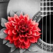 """Набор для выкладывания мозаики Алмазная живопись """"Цветок на гитаре"""""""