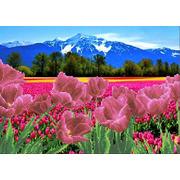 """Ткань с рисунком для вышивки бисером Каролинка """"Тюльпаны у гор"""""""