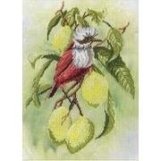 """Набор для вышивания крестом М.П. Студия """"Птичка на ветке лимона"""""""