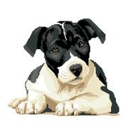 """Набор для вышивания крестом Nitex """"Черно-белый пес"""""""