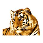 """Набор для вышивания крестом Nitex """"Тигр"""""""