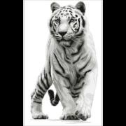 """Набор для вышивания крестом Nitex """"Белый тигр"""""""