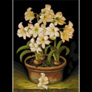 """Набор для вышивания крестом Nitex """"Белые цветы"""""""