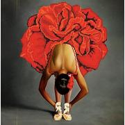 """Канва/ткань с нанесенным рисунком Божья коровка """"Балерина"""""""