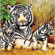"""Ткань с рисунком для вышивки бисером Божья коровка """"Тигры"""""""
