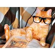 """Набор для выкладывания мозаики Алмазная живопись """"Кот за книжкой"""""""